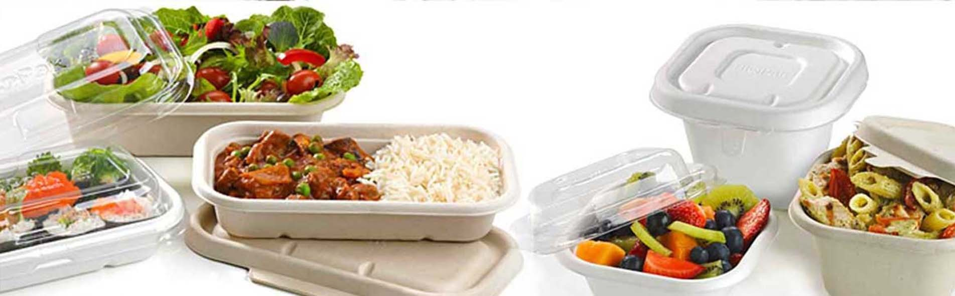 Sugarcane Takeaway Lunch Box